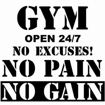 2 Sheets Gym Wall Decal Gym Open 24/7 No Excuses Vinyl Wall